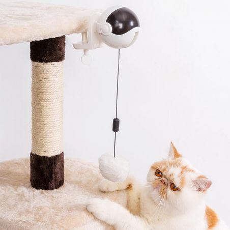 jouet interactif chat