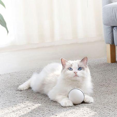 balle chat automatique