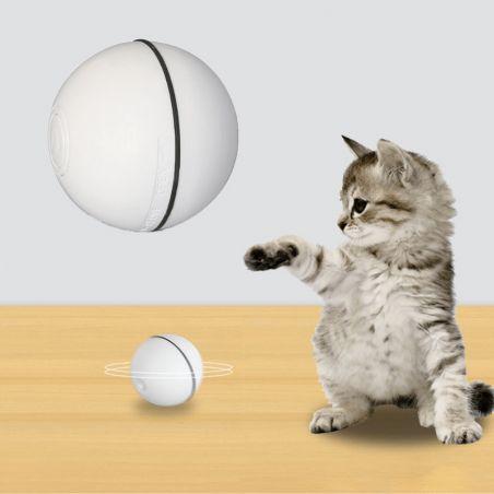 jouet interactif pour chat