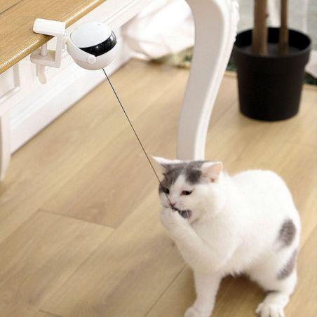jeu interactif pour chat