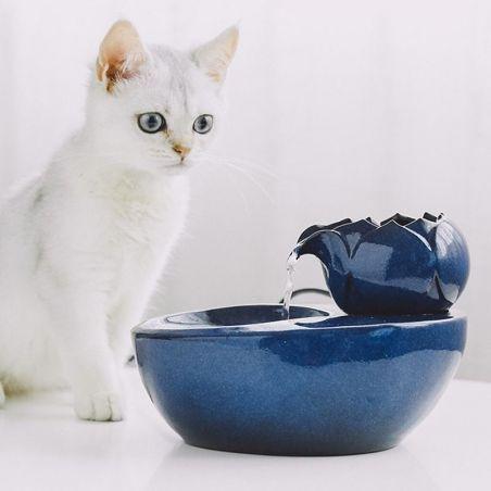 fontaine à eau chat ceramique