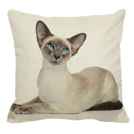 housse coussin chat siamois