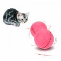 Boule magique pour chat