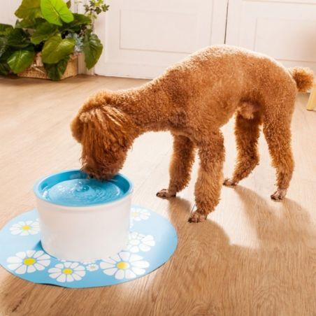 Fontaine a eau pour chien et chat