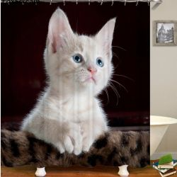 Rideau de douche chaton blanc