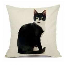 Taie coussin motif chat