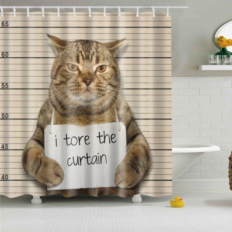 Rideau baignoire chat arrestation