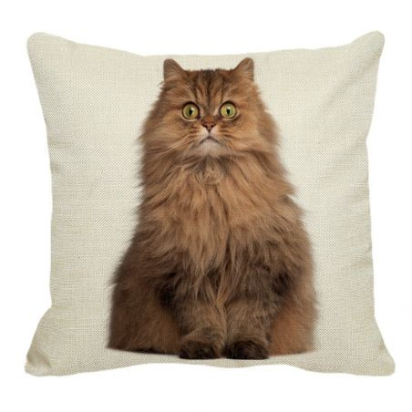 Housse coussin avec chat persan
