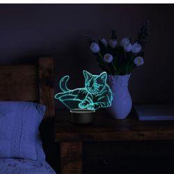 Veilleuse chat acrylique