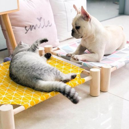 couchage chat