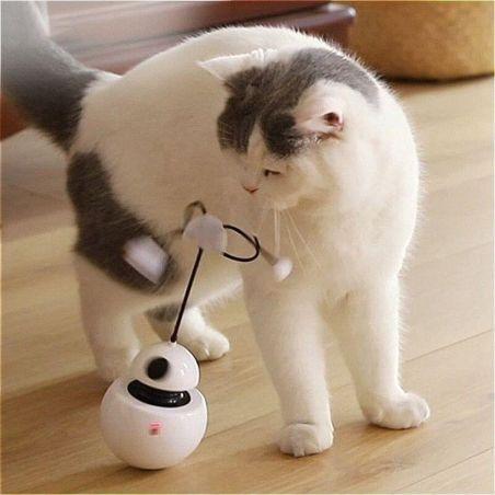 chat robot jouet