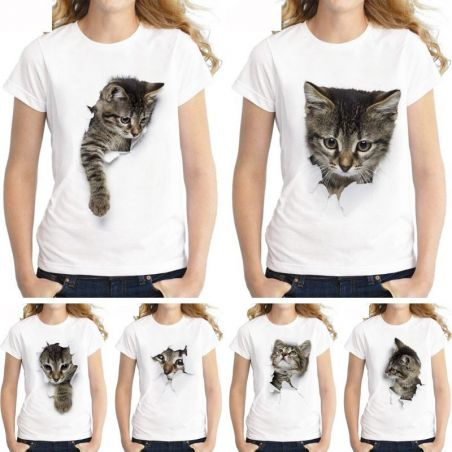 chat homme femme